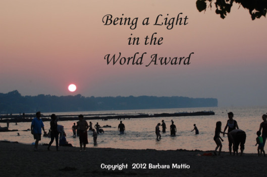 being-a-light-in-the-world.idealistrebel.award