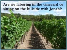 prov 18 laboring vineyard2
