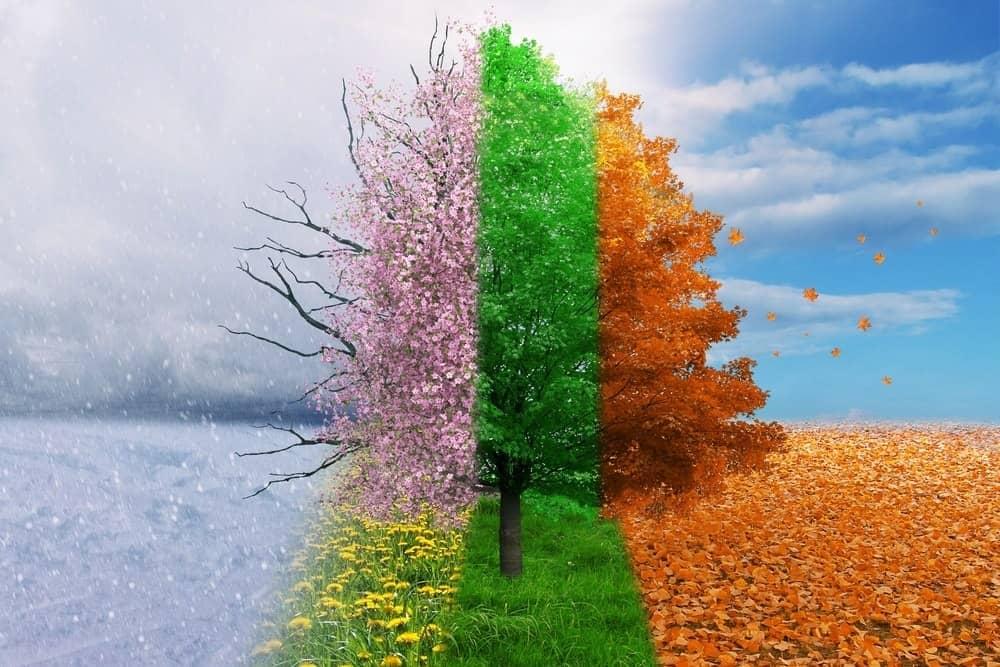 Seasons and You